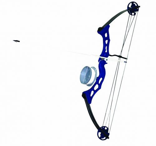 Arrow Precision Frenzy Bowfishing Set